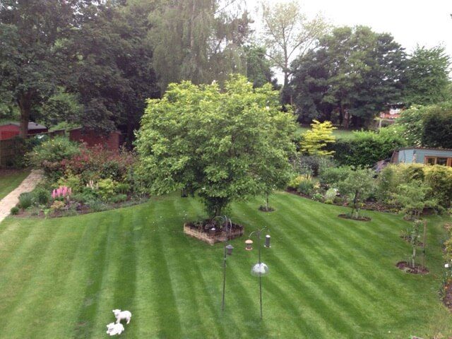 Private Landscaped Garden in Suffolk thumbnail
